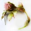 ветка розы на ободке